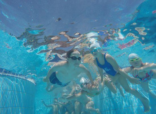 Poletni dopoldanski tečaj plavanja – Laguna 2017